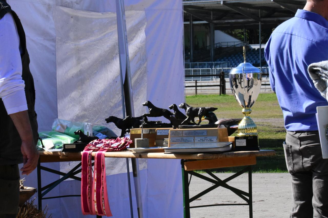 Flat-Trophy-2019-46