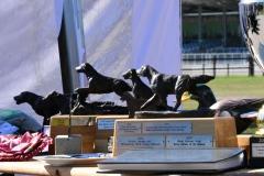 FCR-Trophy-201934